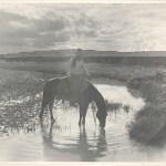 Erwin E. Smith, Frank Smith, Watering His Horse, Cross-B Ranch, Crosby County, Texas, c. 1909