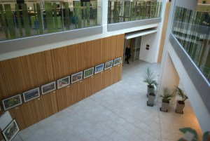 View of the foyer in Conservation House.