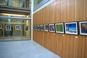 Exhibition of photography currently at Conservation House.