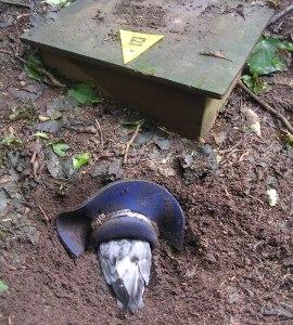 Chatham petrel burrow and flap.