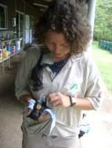 Jess Scrimgeour holding an orphaned fruit bat with another hanging from her shoulder.