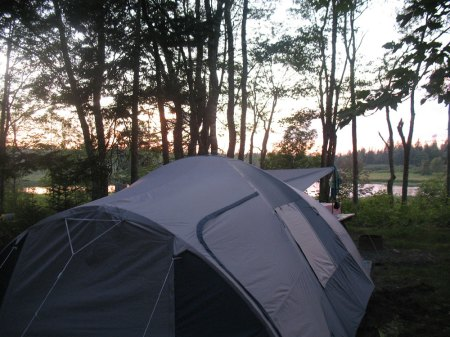 Camping: Our tent looking out onto trees.