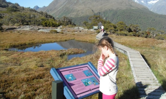 Olivia reading an information post along the Routeburn Track.