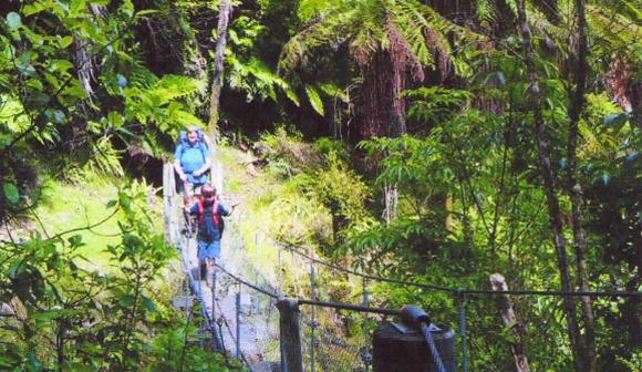 Swing bridge on the Matemateāonga Range.