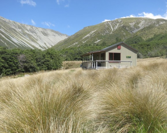 Speargrass Hut in the Nelson Lakes National Park.