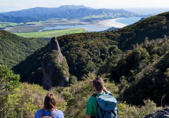 The view from the top of Great Barrier Island.