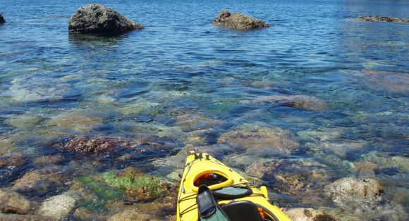 Kayaking in a cove on Great Barrier Island.