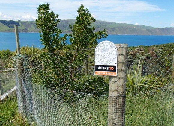Fence around takahē home on Mana Island.