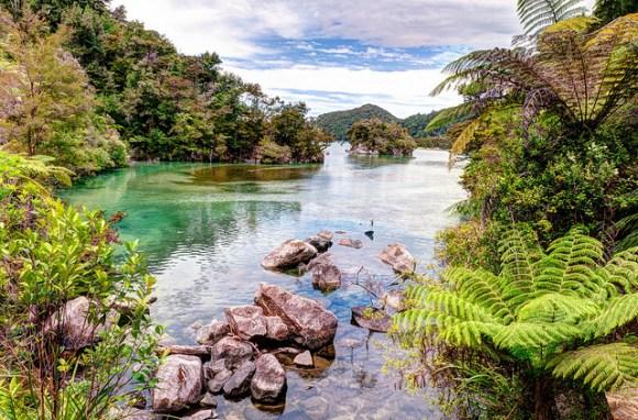 Bark Bay seen on Abel Tasman Coastal Track in Abel Tasman National Park. Photo: John Strother © All rights reserved.