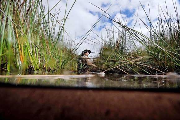 Swamps eye view. Photo: George Novak / NZ Geographic.