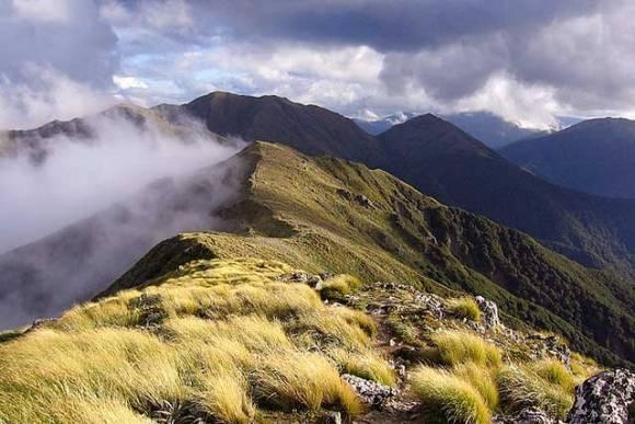 Mt Holdsworth - Jumbo Circuit: Wairarapa tracks and walks