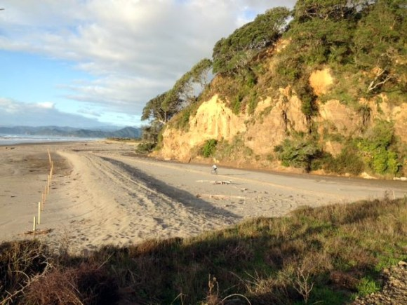 Tirohanga section on the Dunes Trail in the Saturday sun. Photo: Mike / Motu Trails Cycleway.