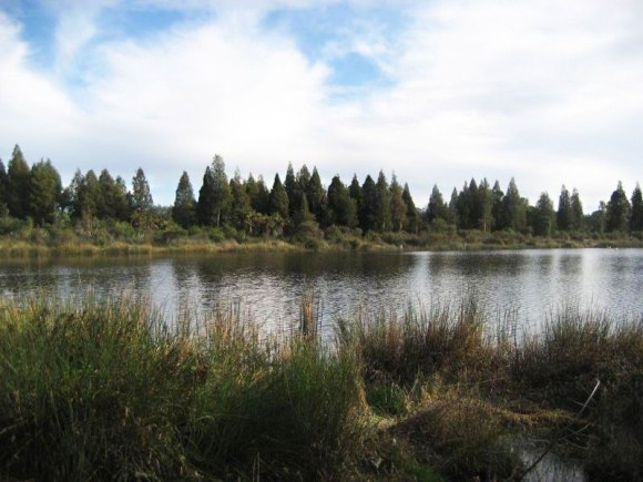 Lake Serpentine Wildlife Management Reserve.