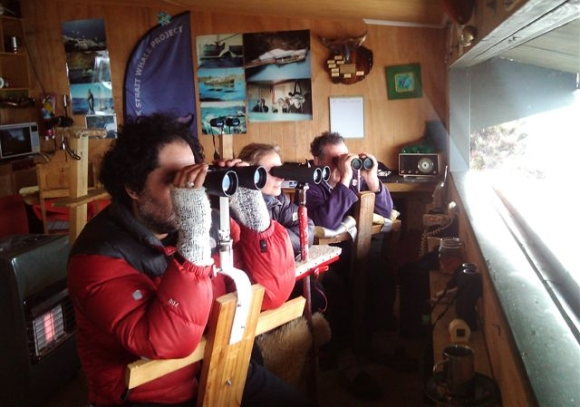 Nadine with Carlos Olavarria and Joe Heberley looking for humpbacks through binoculars from Arapawa Island.