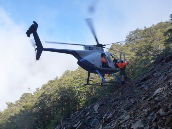 Helicopter hovers at Pelorus.
