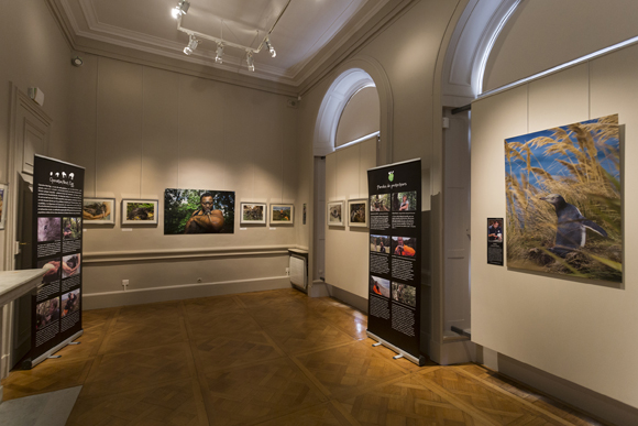 The exhibition inside the Palais du Roi de Rome. Photo copyright Sabine Bernert.