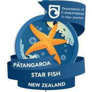 Patangaroa - Star Fish