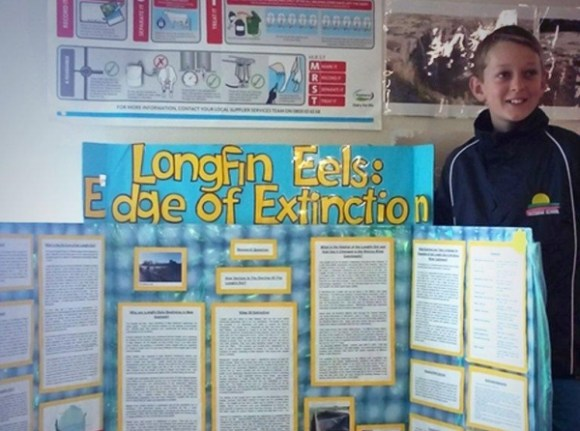 Student next to a presentation about long fin eels.