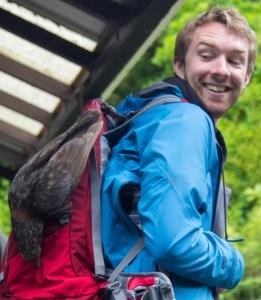 Daniel with a kākā on his backpack on Kapiti Island.