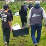 Freshwater field skills wānanga