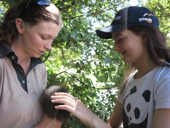Sarah patting a brown kiwi held by a DOC ranger. Photo: Sarah Ridsdale.