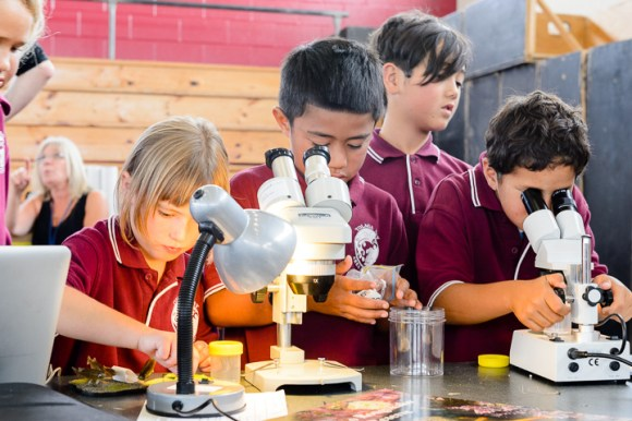 Basecamp activities at Tolaga Bay Area School Gym. Uawanui Sustainability Project Bio Blitz. Photo: Mark Coote ©