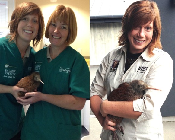Emma with Kindara as a chick and at his release.