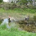 Rangers setting nets to monitor Rotorua's lakes.