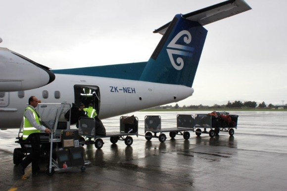 Three kiwi are unloaded from a Air New Zealand flight at Palmerston North Airport. Photo: Nina Mercer.