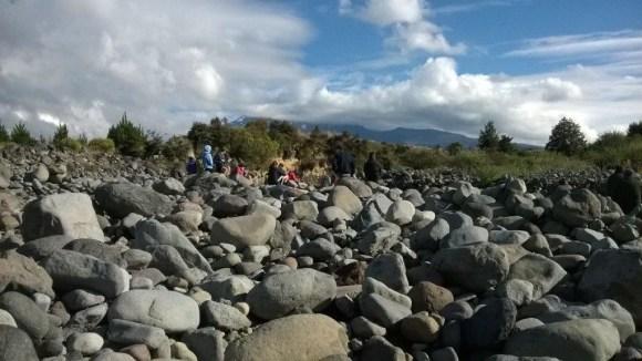 Finding whio on the Whakapapanui River.