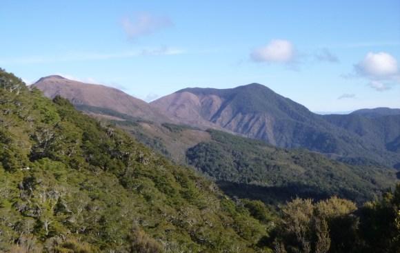 Maungatapu Saddle.