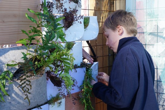 Student planting on the Urban Living Wall.