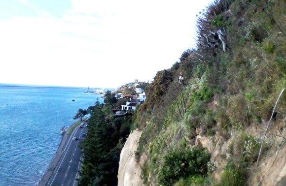 Rocks Road cliffs.