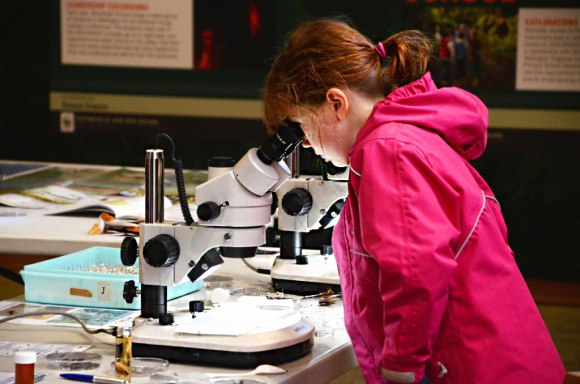 Samanth McPherson (age 8) discovers something under the microscope.