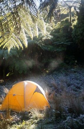 A frosty morning.