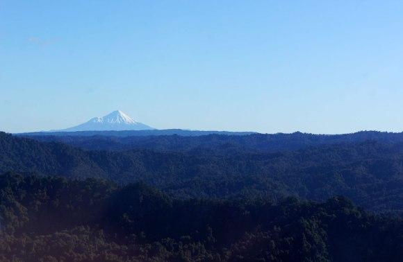 Stunning views of snow-capped Mt Taranaki.