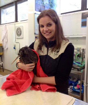 Nicola Toki spends time with a kiwi patient at Wildbase Hospital.