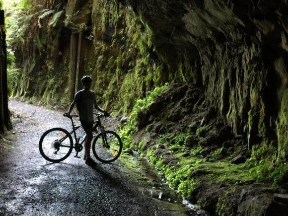 Georgia Sanson cycling the Timber Trail. Photo: Lou Sanson.