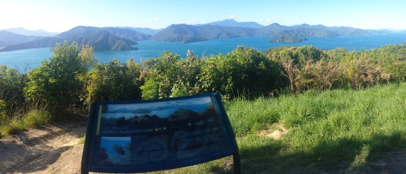 Queen Charlotte view from Snout Track in Picton. Photo: Anita Tibbertsma