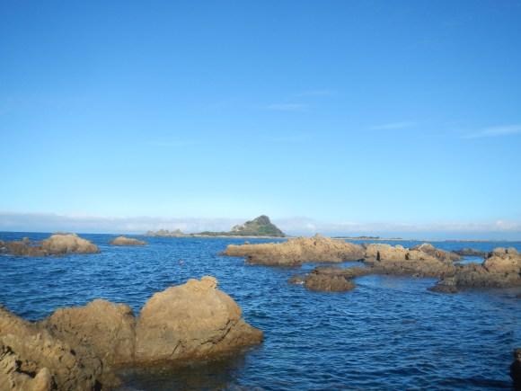 Taputeranga Marine Reserve and Taputeranga Island.