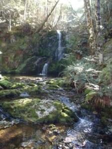 Beebys Creek.