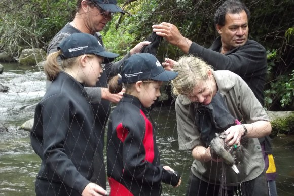 Olive and Alice watch while Senior Biodiversity Ranger Ali Beath untangles one of the whio caught.