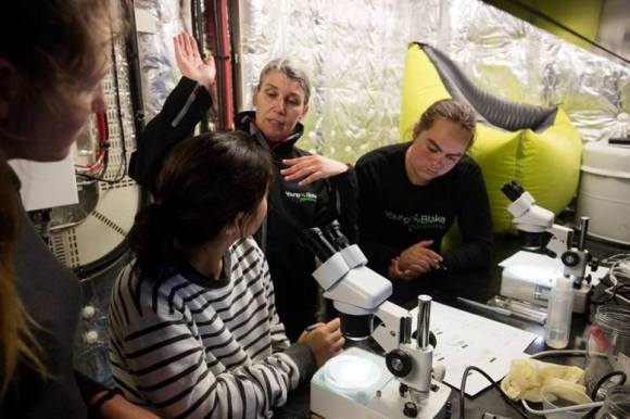 Putting it in perspective: Tama, Nina and Isla taking a closer look at plankton with marine expert Sally Carson. Photo by Brendon O'Hagan.