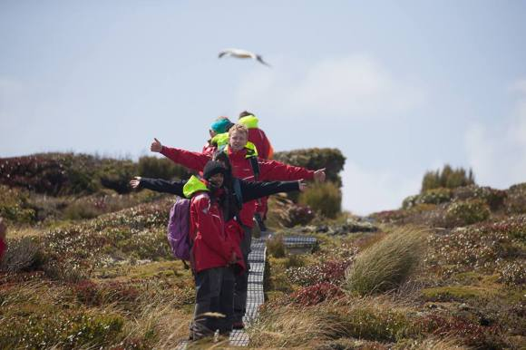 Students on the boardwalk on Enderby – a chance to get up close to young Southern royal albatross. Photo by Brendon O'Hagan.