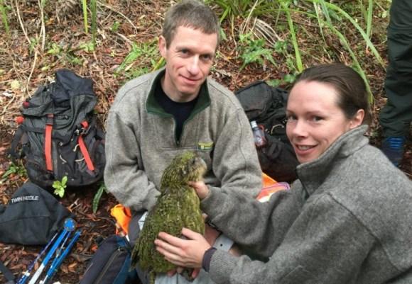 Kākāpō scientist Dr Andrew Digby and Kākāpō Recovery Programme manager Deidre Vercoe on Whenua Hou.