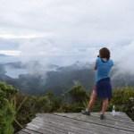 At the summit on Great Barrier Island looking toward Hauturu.