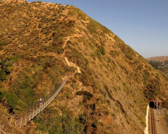 Paekakariki Escarpment Track.
