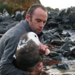 Paul Jacques releasing a juvenile wandering albatross at Bluff.