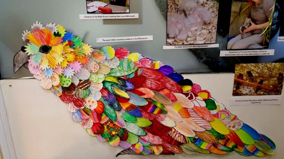 The colourful paper kākā now on display in the Fiordland National Park Visitor Centre.