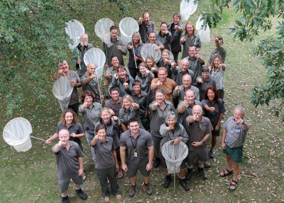 Great White Butterfly Eradication Programme team.